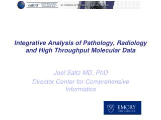 Integrative Analysis of Pathology, Radiology and High Throughput Molecular Data