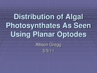 Distribution of Algal Photosynthates As Seen Using Planar Optodes