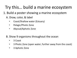 Try this… build a marine ecosystem