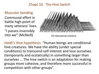 Chapt 10.  The Hive Switch
