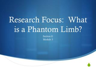 Research Focus:  What is a Phantom Limb?
