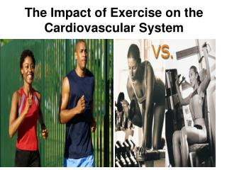 The Impact of Exercise on the Cardiovascular System