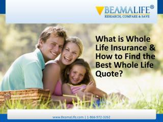 What is Whole Life Insurance & How to Find the Best Whole Li