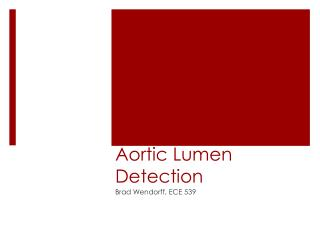 Aortic Lumen Detection