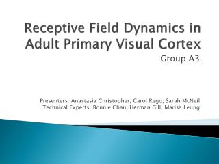 Receptive Field Dynamics in Adult Primary Visual Cortex