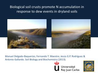 Biological soil crusts promote N accumulation in response to dew events in  dryland  soils