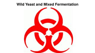 Wild Yeast and Mixed Fermentation