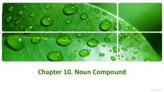 Chapter 10. Noun Compound