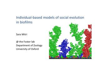 Individual-based models of social evolution in  biofilms