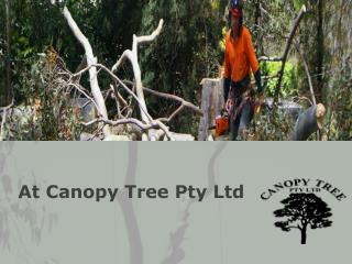 At Canopy Tree Pty Ltd