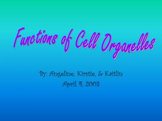 By: Angeline, Kirstie, & Kaitlin April 4, 2003