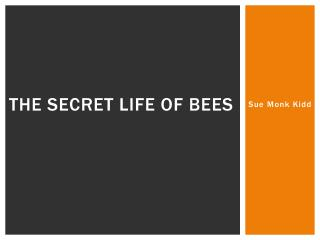 literary analysis essay on the secret life of bees