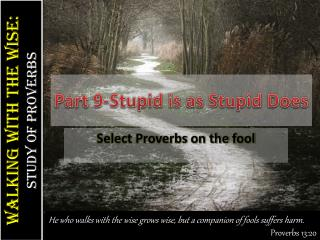 Part  9-Stupid is as Stupid Does