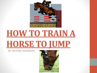 HOW TO TRAIN A HORSE TO JUMP