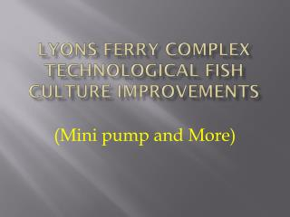 Lyons Ferry Complex Technological fish culture improvements