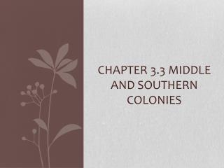 Chapter 3.3 Middle and southern colonies