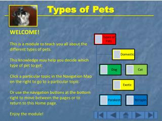 WELCOME! This is a module to teach you all about the different types of pets.