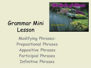Grammar Mini Lesson