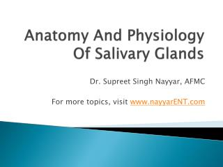 Anatomy And Physiology Of Salivary Glands