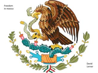 Freedom  In  mexico