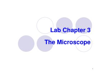 Lab Chapter 3