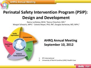 Perinatal Safety Intervention Program (PSIP):  Design and Development