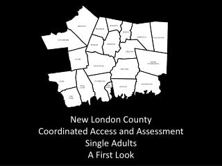 New London County  Coordinated Access and Assessment Single Adults A First Look