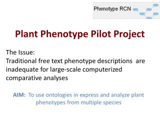 Plant Phenotype Pilot Project