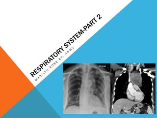Respiratory system-part 2