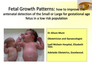 Dr Alison Munt Obstetrician and Gynaecologist Lyell McEwin Hospital, Elizabeth Vale.