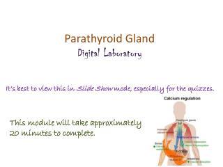 Parathyroid Gland Digital Laboratory