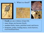 1.  What is a fossil