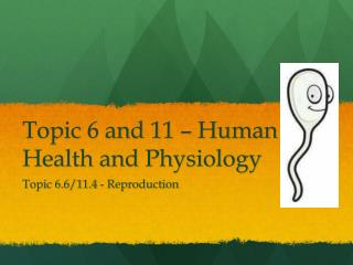 Topic 6 and 11 – Human Health and Physiology