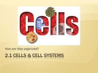 2.1 Cells & Cell Systems