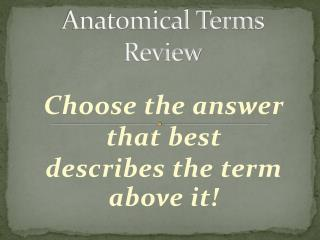 Anatomical Terms  Review