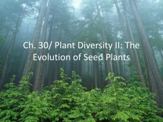 Ch. 30/ Plant Diversity II: The Evolution of Seed Plants