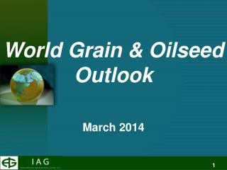 World Grain & Oilseed  Outlook