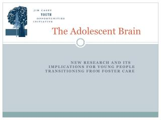 The Adolescent Brain