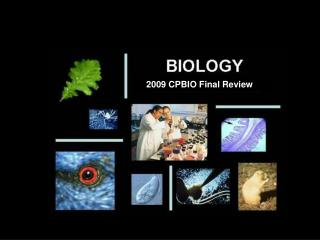 2009  CPBIO Final Review