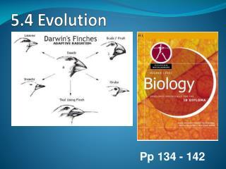 5.4 Evolution