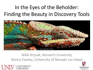 In the Eyes of the Beholder:  Finding the Beauty in Discovery Tools