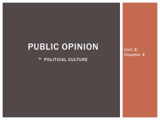 Public opinion - political culture