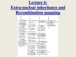 Lecture 6: Extra-nuclear inheritance and Recombination mapping