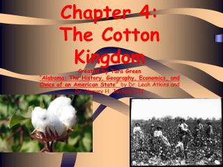 Chapter 4:  The Cotton Kingdom Created by Tara Green