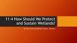 11-4 How Should We Protect and Sustain Wetlands ?