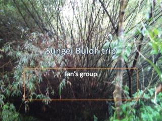 Sungei Buloh trip