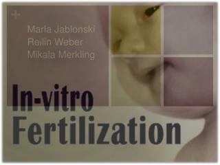 Marla Jablonski Reilin Weber Mikala Merkling