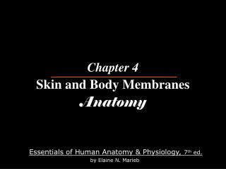 Chapter 4 Skin and Body Membranes Anatomy