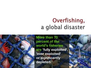 Overfishing, a global disaster