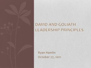 David and Goliath Leadership Principles